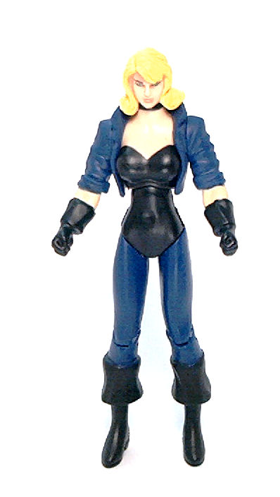 The name black canary toys curvy