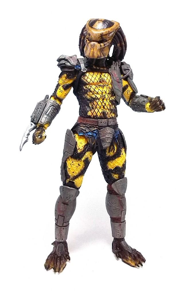 Wasp Predator (8)