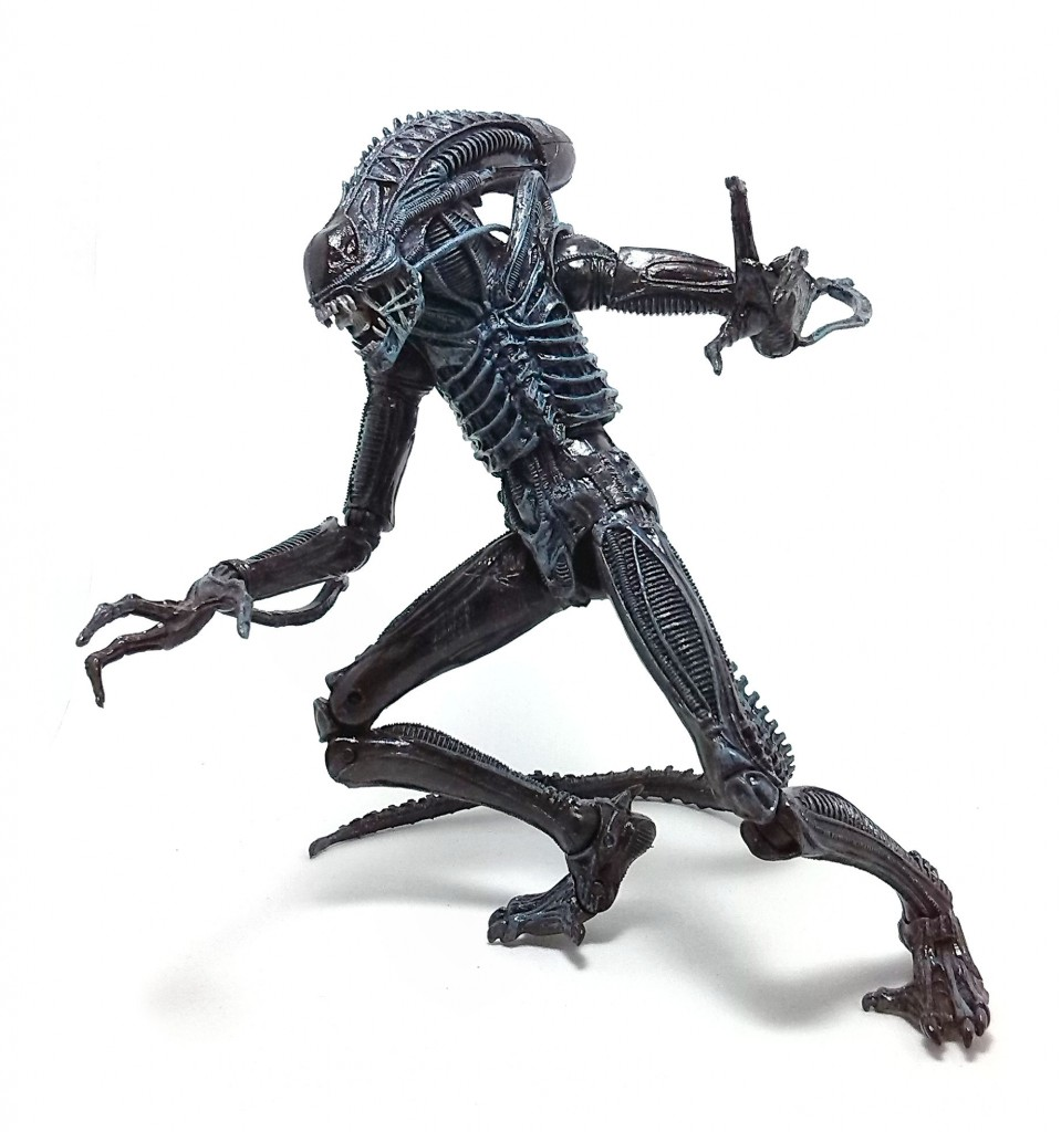 Xenomorph Warrior (3)