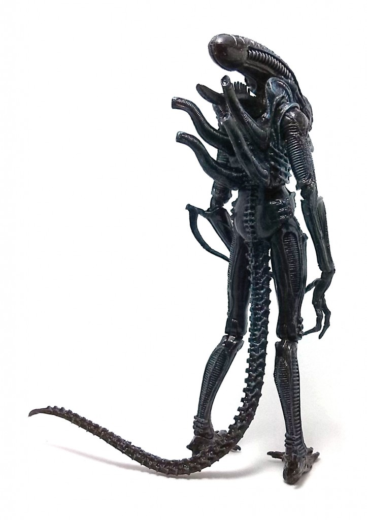 Xenomorph Warrior (8)