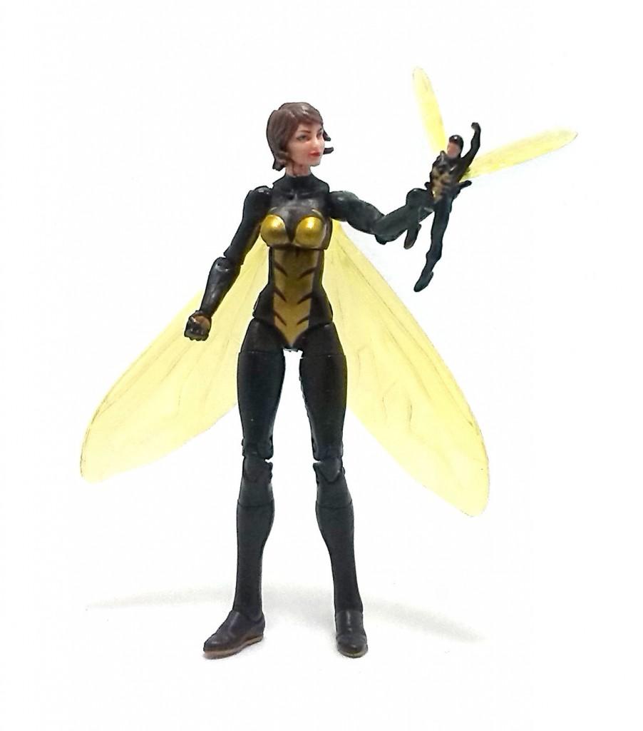 Wasp (8)