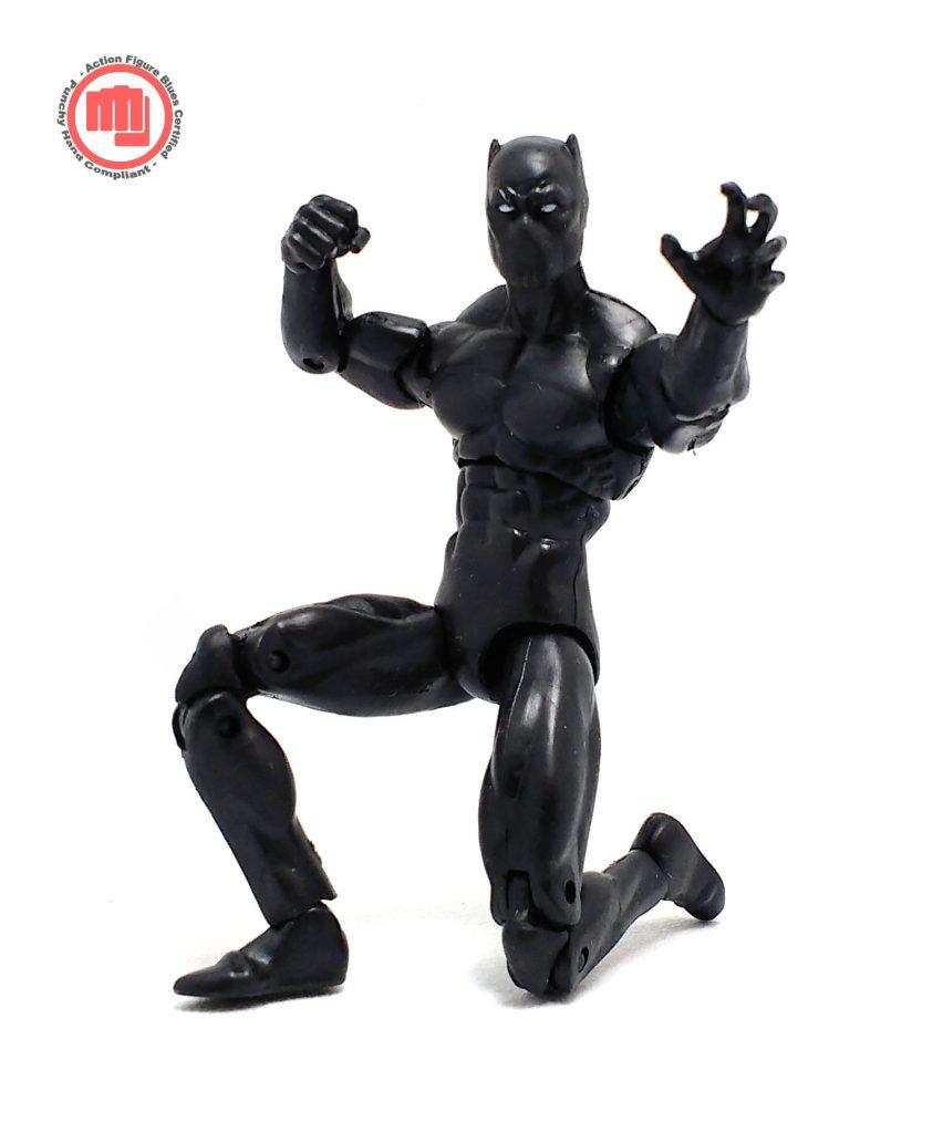 Black Panther PHC